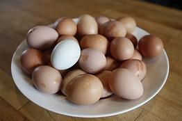 Juggle_eggs_D_20090413215659